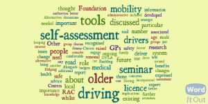 Older driver seminar word cloud